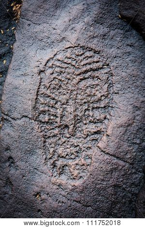 Ancient Petroglyphs Found On Shore Of Amure River.