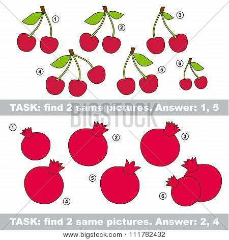 Visual game. Find hidden couple of Cherry and pomegranate