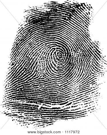 Fingerprint14B