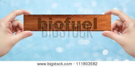 Hands Holding A Wood Engrave With Word Biofuel