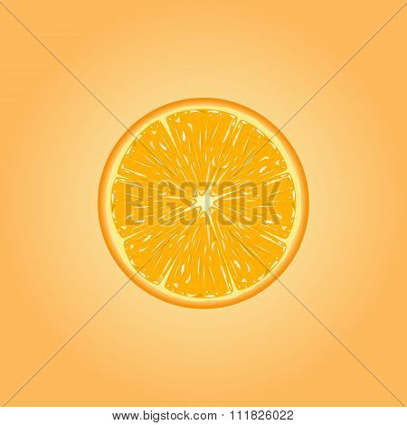 Vector illustration of orange slice.
