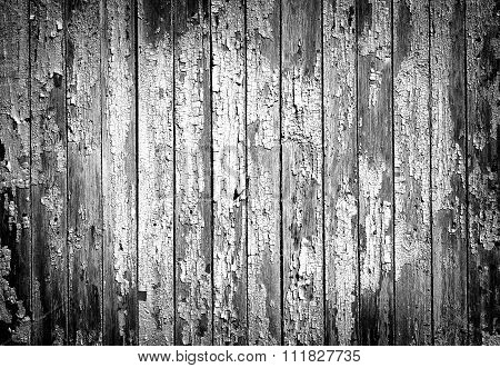 Texture Of Old Painted Wooden Fence Black And White High Contrasted With Vignetting Effect