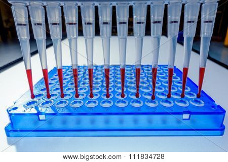 Multi pipette in genetic laboratory