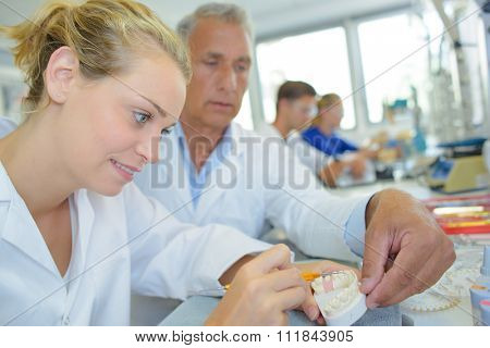 Supervisor guiding dental technician