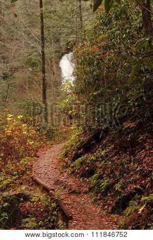 Helton Creek Falls Trail