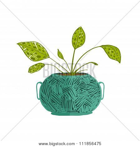 Green indoor leafy plant in pot