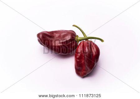 Chili Pepper Habanero Chocolate
