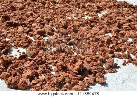 Nutmeg Dry By The Sun