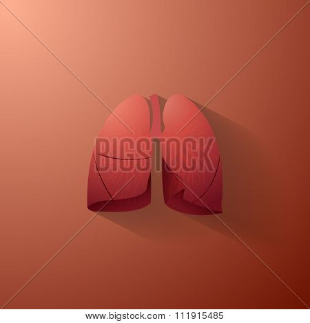 Human Lungs Illustration With Bronchial Tree