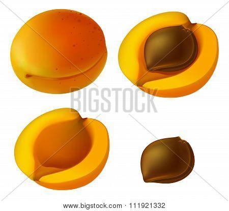 Apricot Elements