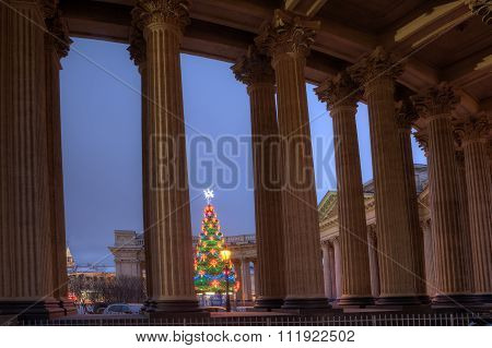 Decorating Outdoor Light New Year Tree, Nightlife, Saint Petersburg, Russia.