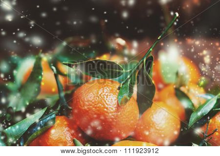 Fresh Clementines or Tangerines on Brown Wooden Table with Xmas Lights