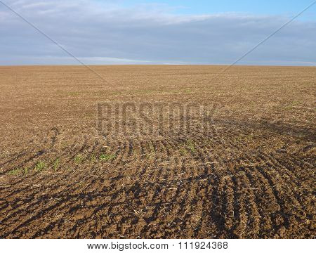 Ploughed Field With Brown Soil