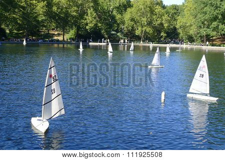 Model Yachts in New York Central Park