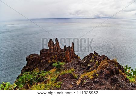 Rock with plants with sea view and gloomy sky. Tenerife, Canary Islands, Spain
