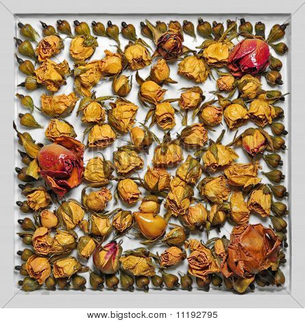 Picture from the dried colors of roses and leaves in a frame
