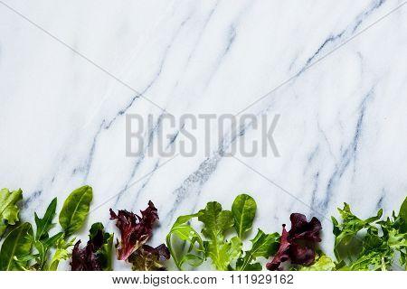 Green Herbs Salad