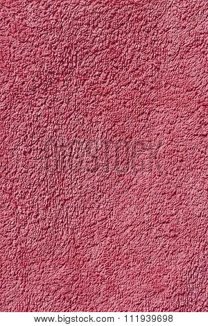 Pink Terry Towel