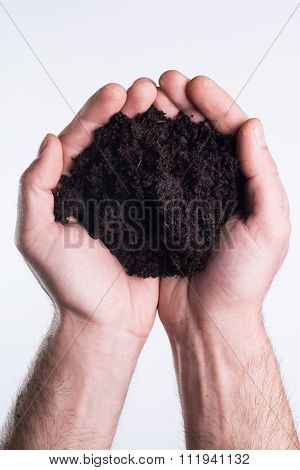 Hands Holds Topsoil