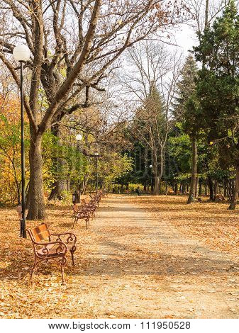 Varna, Bulgaria - November 10: An Authentic Landscape People Relax In The City Park In The Fall. Nov