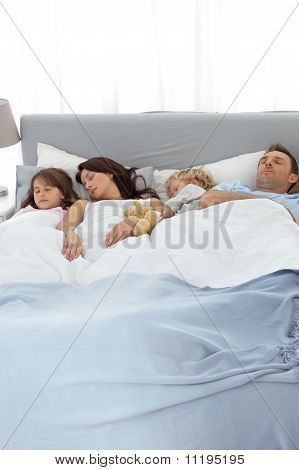 Peaceful Family Sleeping Together