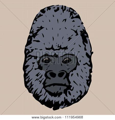 Head Gorilla