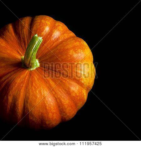 Mature Pumpkin On A Black Background