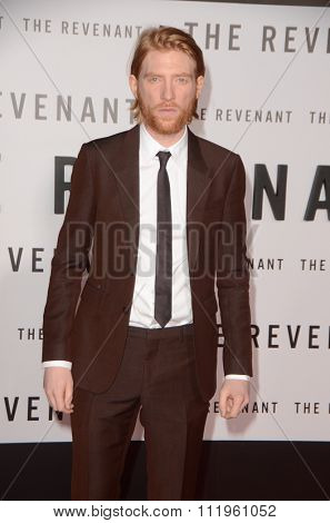 LOS ANGELES - DEC 16:  Domhnall Gleeson at the The Revenant Los Angeles Premiere at the TCL Chinese Theater on December 16, 2015 in Los Angeles, CA