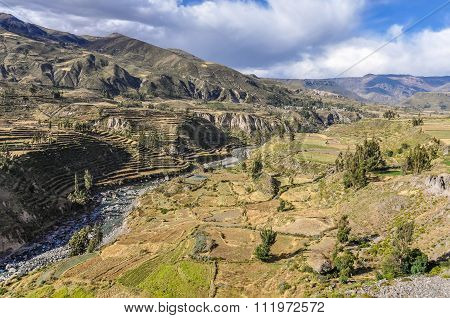 Panoramic View Of The Terraces In The Colca Canyon, Peru
