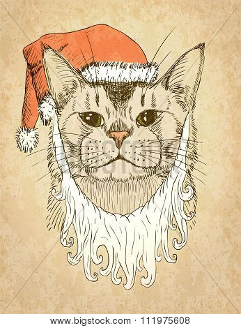 Christmas Cat. Vector Illustration, Eps10.