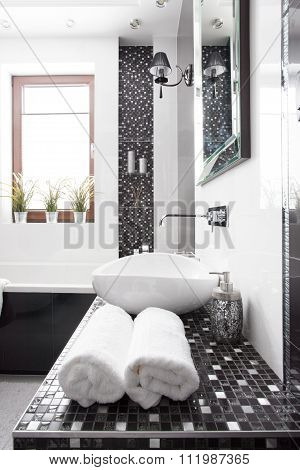 Black And White Washroom
