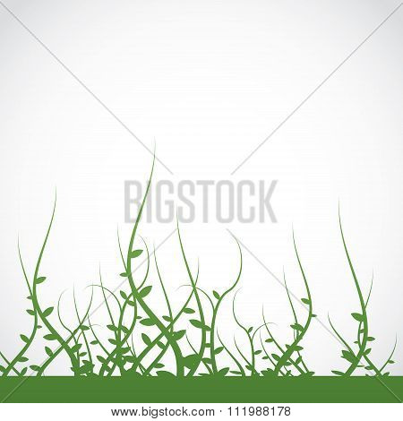Growing Plants Weeds Background