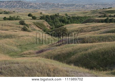 Rolling Hills Of Grass