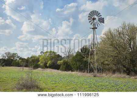 Windmill And Bluebonnets In The Texas Hill Country