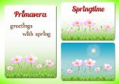 Постер, плакат: Three Spring Positive Templates With Pink Flowers On Lawn