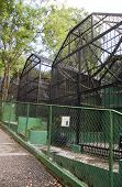 stock photo of inhumane  - anitquated old fashion inhumane zoo cages Emperor Valley Zoo Port of Spain Trinidad  - JPG