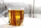 foto of cider apples  - cup of hot apple cider outdoors in the snowy winter - JPG