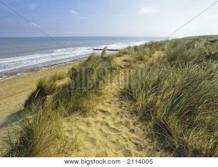 Norfolk Coast