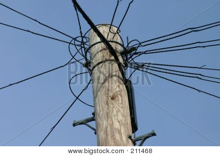 Top Of A Telegraph Pole