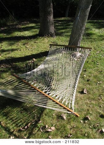 Net Hammock Strung Between Two Trees
