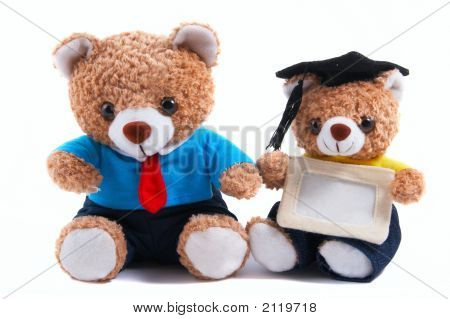 Office, Graduate Teddy Bear