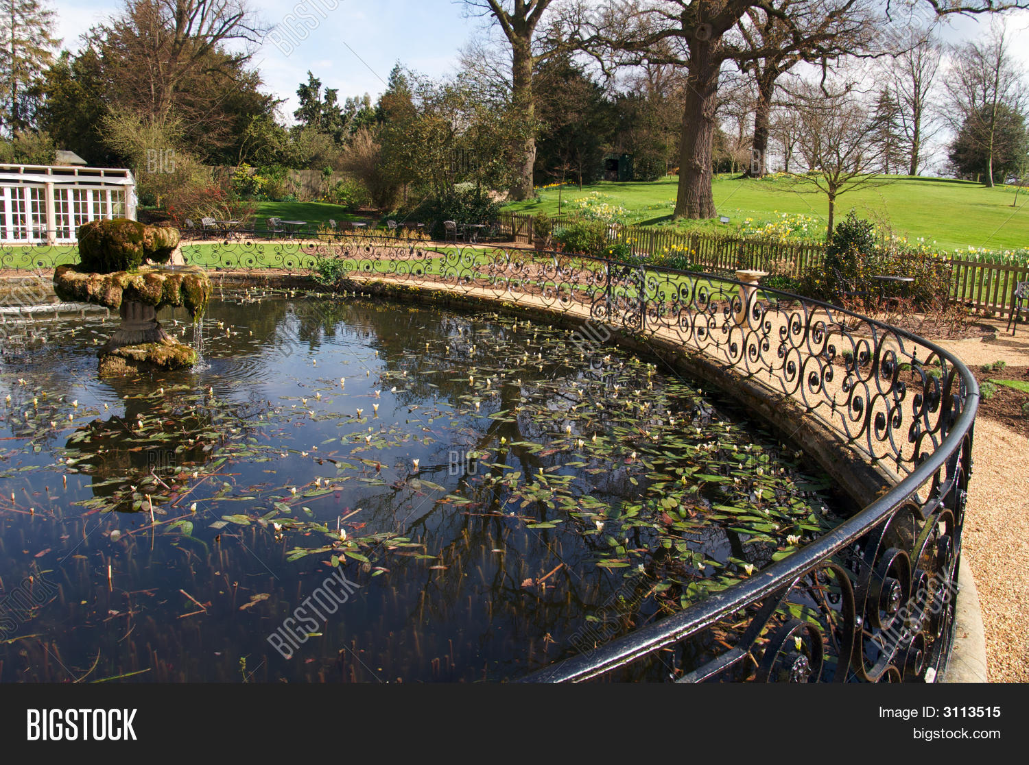 Ornamental fish pond image photo bigstock for Ornamental fish garden ponds