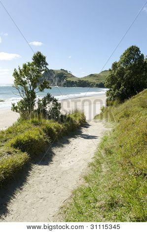 beautiful sandy pathway to beach