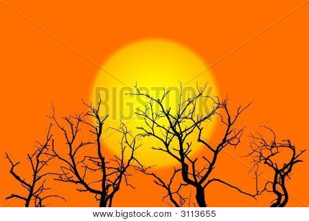 Sun And Trees Illustration