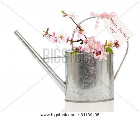 Watering can filled with spring blossom with Mother's Day greeting