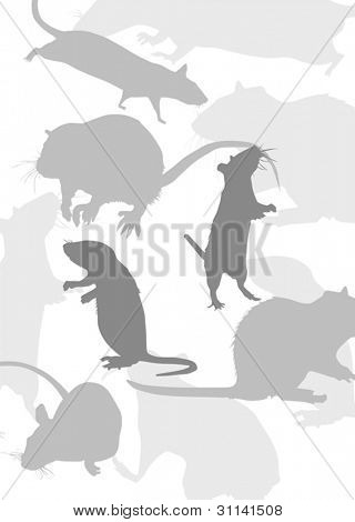 rat silhouettes isolated on white background