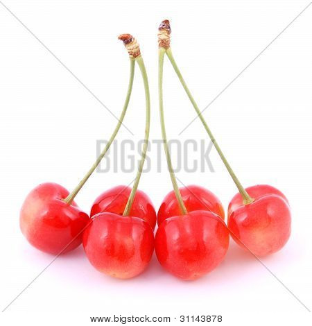 Uncommon Red Cherries
