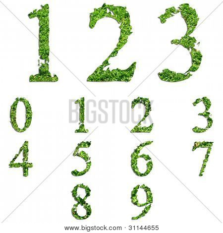 High resolution conceptual set or collection of green grass,eco font isolated on white background,ideal for nature,summer,spring,alphabet,ecology,environment,plant,abc,ecological,conservation design