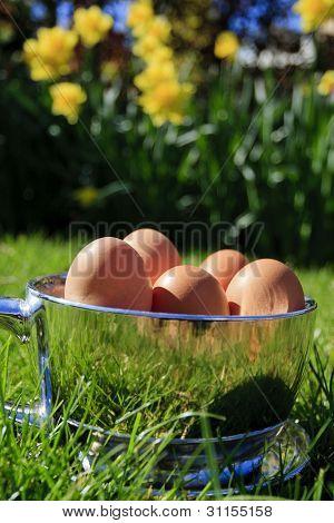 Spring - Easter egg cup (portrait)