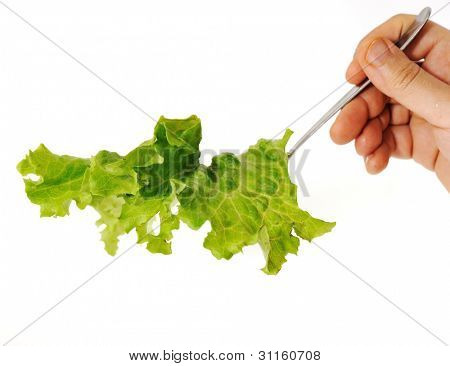 Salad in hand